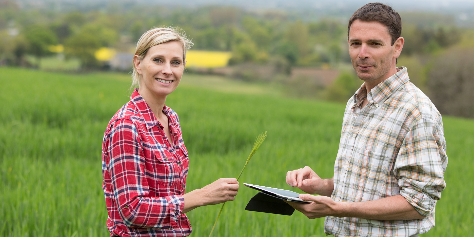 Qu'est-ce qui fait de vous un bon TC auprès des agriculteurs ?